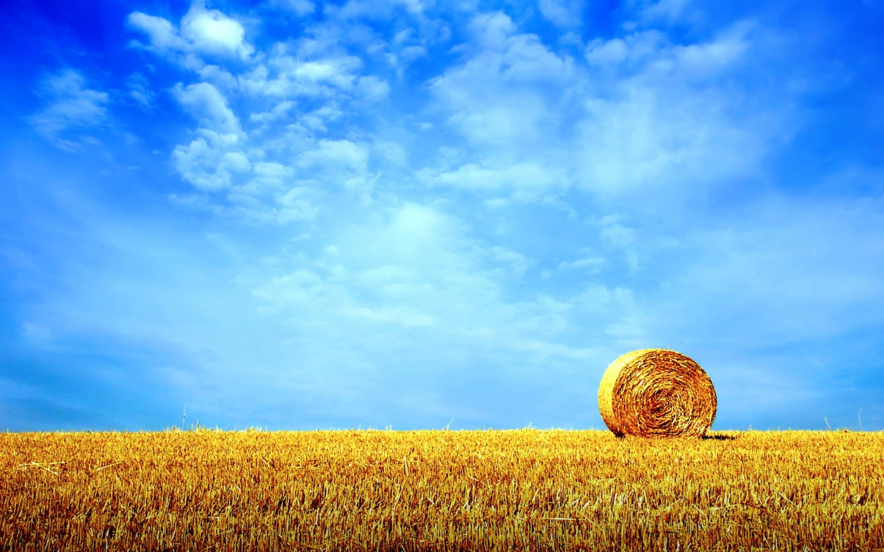 widescreen latest hd background