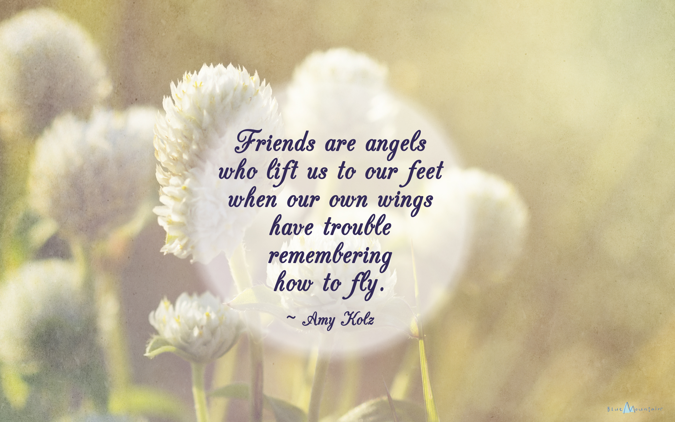 beautiful friend quotes image