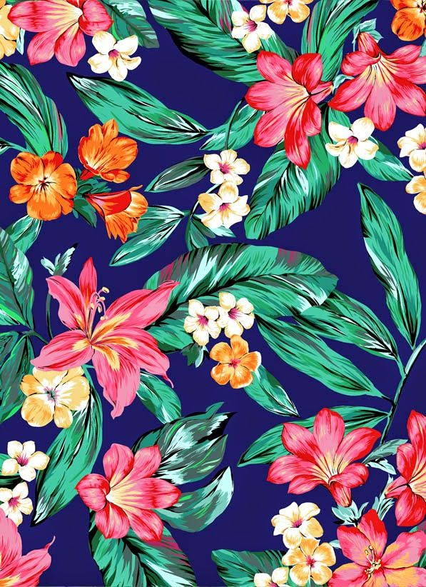colorful tropical flowers image