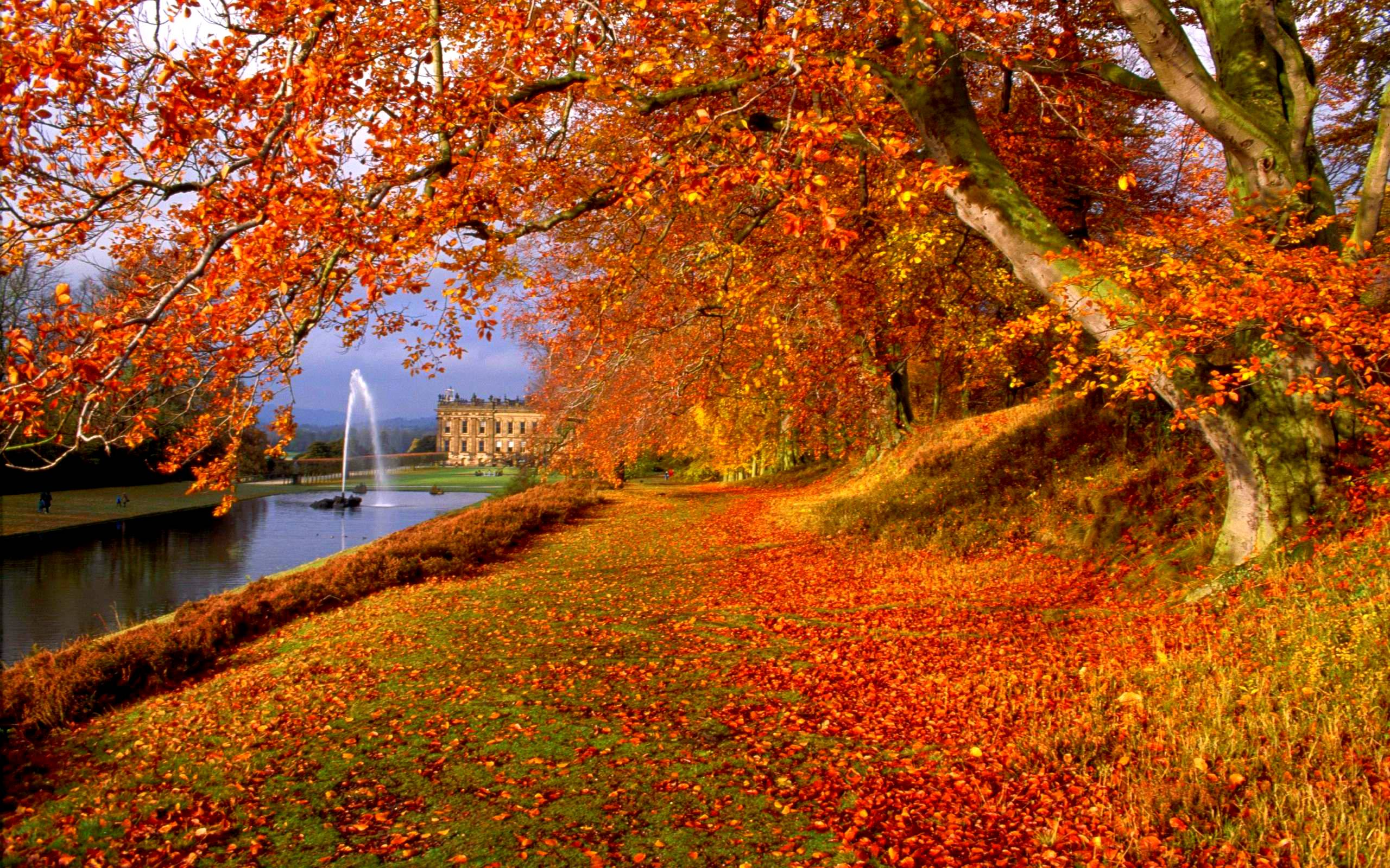 awesome view natural autumn