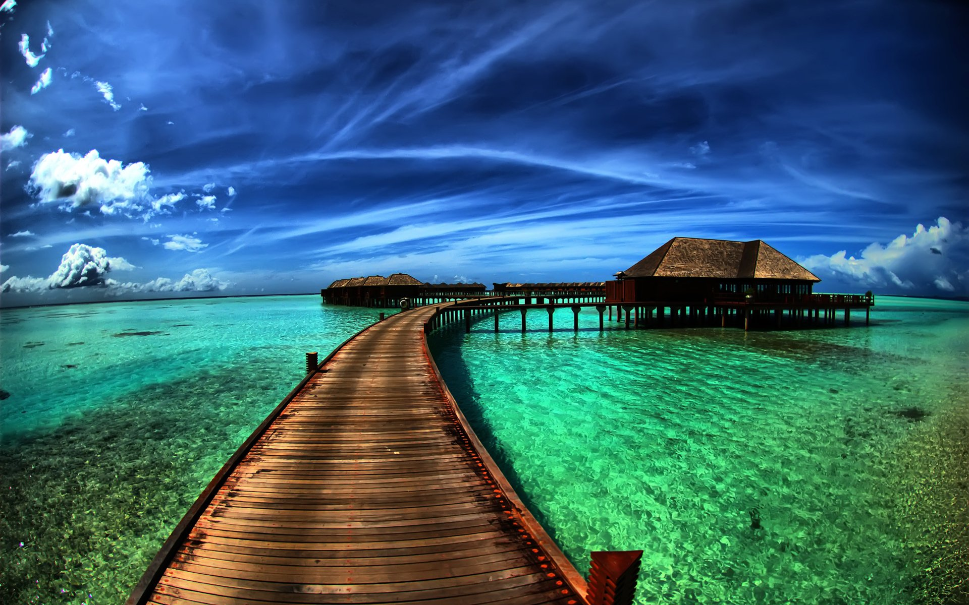 cool hd Tropical Wallpapers