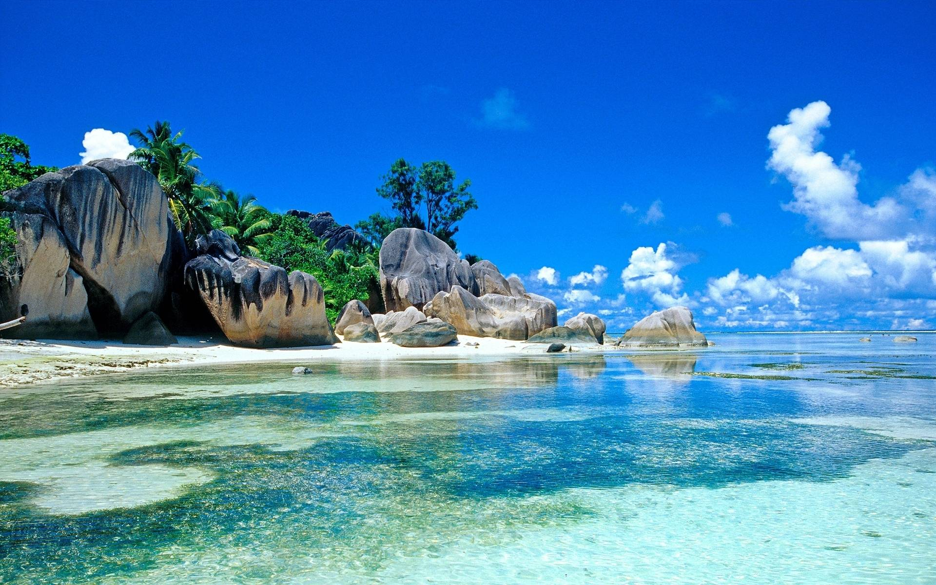 free hd Tropical Wallpapers